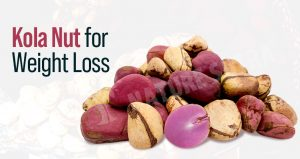 Kola Nut For Weight Loss: Uses, Side-Effects, Benefits, And Precautions