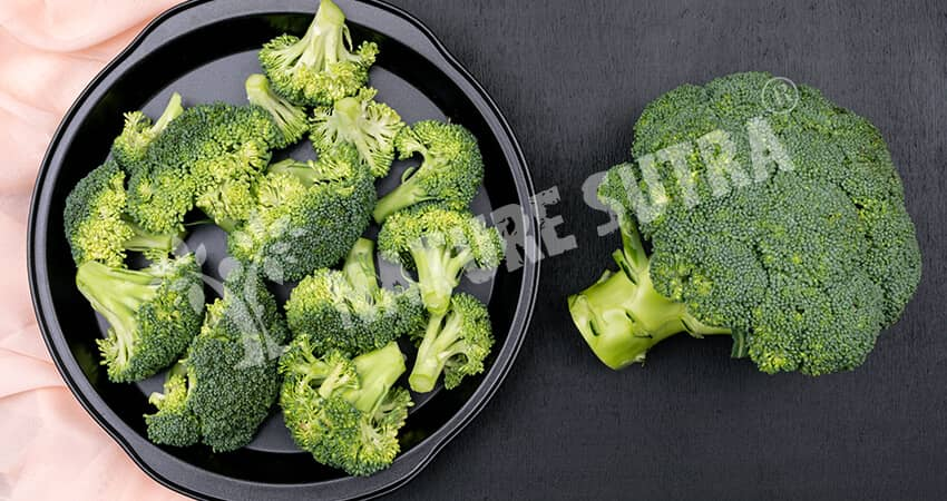 Broccoli - A Great Plant-Based Protein Source