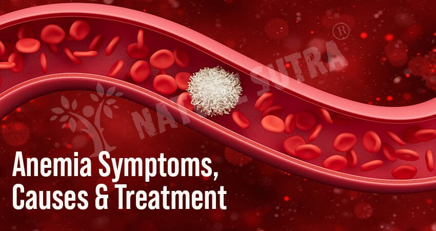What is Anemia? Know Its Definition, Symptoms, Causes, and Treatment