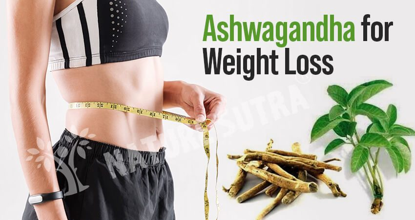 Ashwagandha For Weight Loss: Know How to Use
