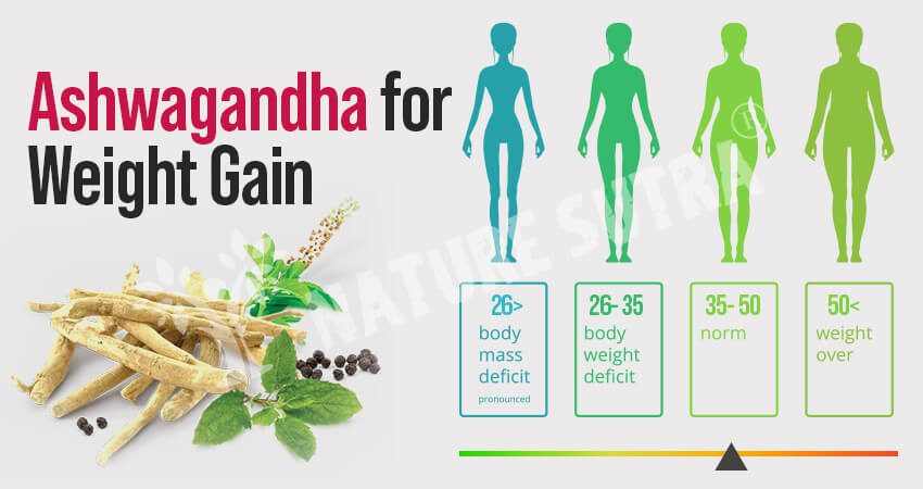 Ashwagandha For Weight Gain- How To Use It For Weight Gain?